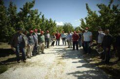 Elmalı'ya 212 dekar organik elma bahçesi