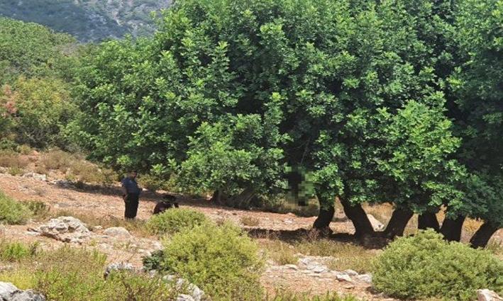 Eşine 'dağlık alana gidiyorum' deyip evden çıktı, ağaca asılı cesedi bulundu