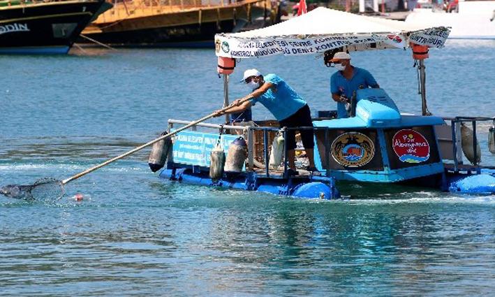 Alanya'da Ağustos ayında 402 kilogram deniz çöpü toplandı