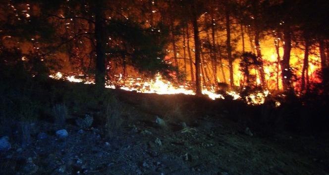 Manavgat'taki orman yangını yerleşim yerlerine ulaşmadan kontrol altına alındı