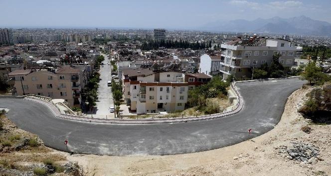 Barış Mahallesi Akdeniz bitkileriyle süslenecek
