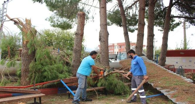 Kumluca'da fırtınanın izleri siliniyor