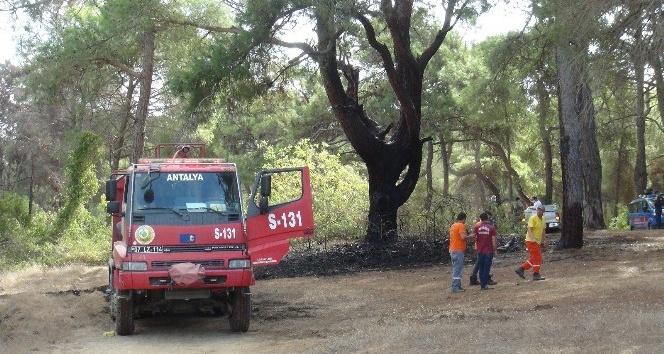 Manavgat'ta 3 günde 6 orman yangını