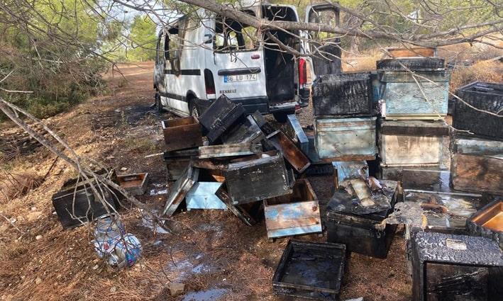 Kamyonet ve arı kovanları alev alev yandı
