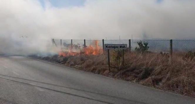 Antalya'da aynı gün içerisinde çıkan 3 ayrı yangında 10 dönümün üzerinde alan yandı
