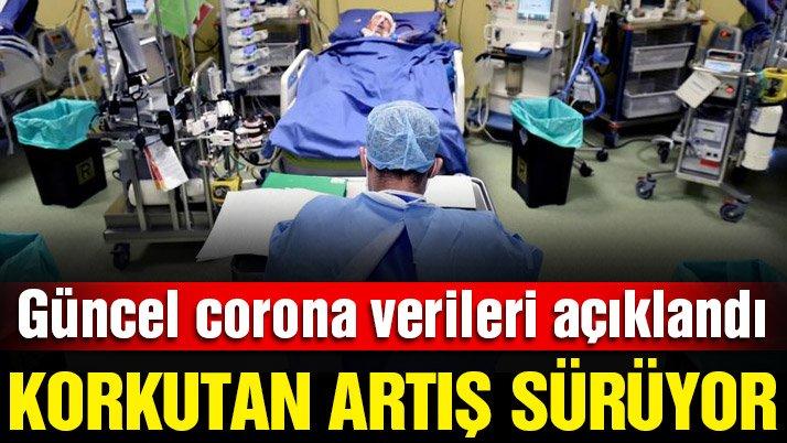 Son dakika… Güncel corona virüsü verileri açıklandı! İşte 19 Kasım tablosu