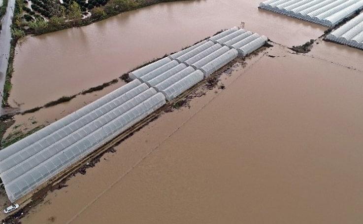 Sular altında kalan tarım arazilerinin başından ayrılmadılar