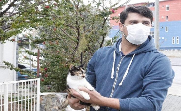 Mola yerinde kaybettiği kedisi için 400 kilometre geri geldi