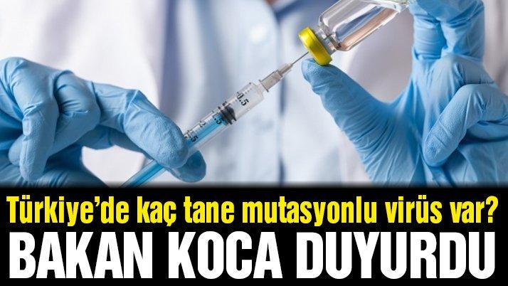 Türkiye'de kaç tane mutasyonlu virüs var? Bakan Koca açıkladı