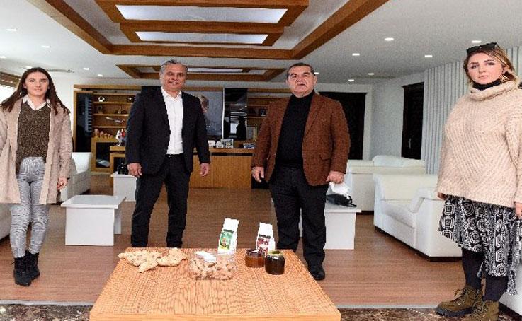 Muratpaşa'da şifa kaynağı zencefil üretimi başlıyor