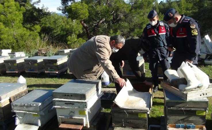 Dedektif gibi iz süren arıcı, çalınan arılarını 200 kilometre uzakta buldu