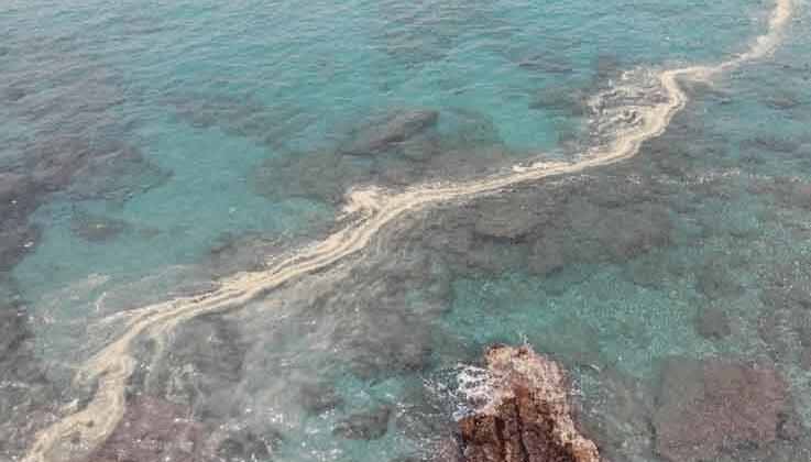 Alanya'da deniz salyası kıyılara vurdu