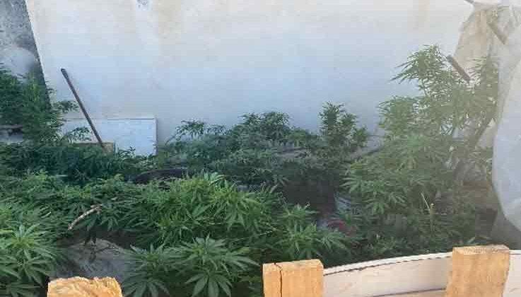 Antalya'da eş zamanlı uyuşturucu operasyonu: 14 gözaltı