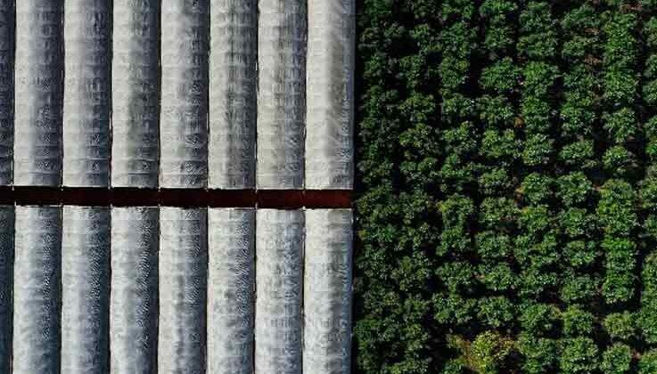 Sağlıklı Çevre Temiz Antalya Fotoğraf Yarışması sonuçlandı