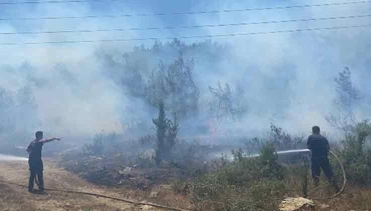 Manavgat'ta çıkan yangında 5 dönüm ormanlık alan zarar gördü