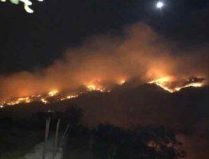 Gazipaşa'da 3 farklı noktada orman yangını