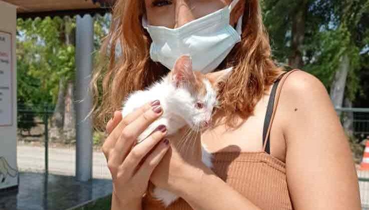 Hayvan barınağının ilk ziyaretçisi engelli kediyi sahiplendi