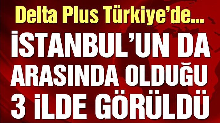 Delta Plus Türkiye'de: İstanbul'un da arasında olduğu 3 ilde görüldü