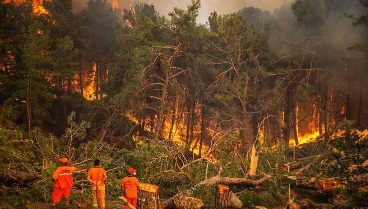 Manavgat'taki büyük yangın 8'inci gününde